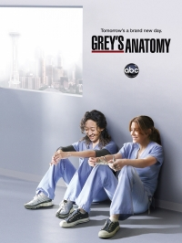 Сериал Анатомия страсти/Grey's Anatomy  11 сезон онлайн