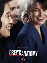 Сериал Анатомия страсти/Grey's Anatomy  13 сезон онлайн