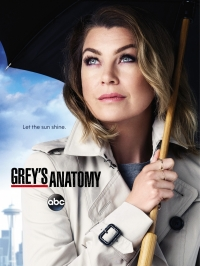 Сериал Анатомия страсти/Grey's Anatomy  14 сезон онлайн