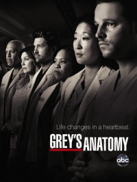 Сериал Анатомия страсти/Grey's Anatomy  4 сезон онлайн