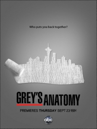 Сериал Анатомия страсти/Grey's Anatomy  8 сезон онлайн